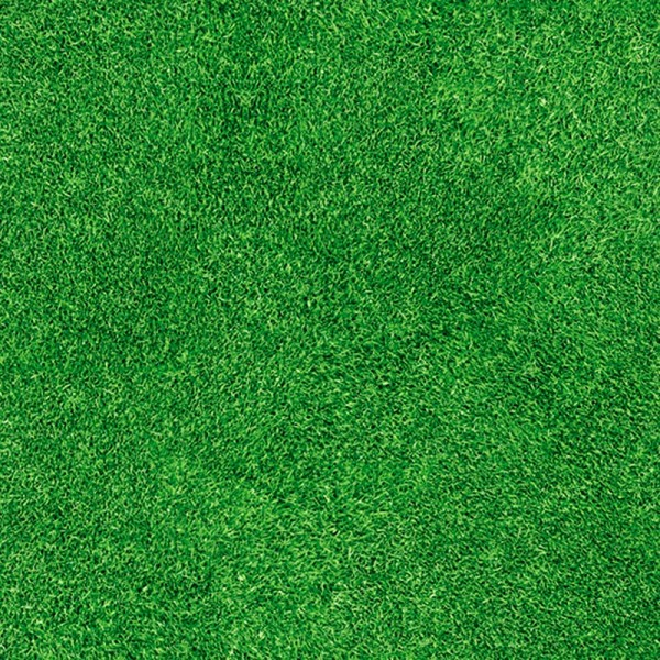 Bedruckter Teppich B1 Gras Rasen