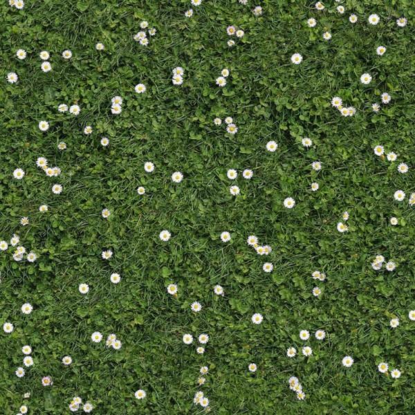 Bedruckter Teppich B1 Gras Rasen Gänseblümchen